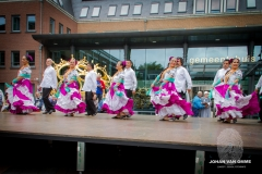 dansgroepen (61 van 106)