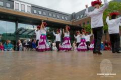 dansgroepen (77 van 106)