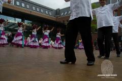 dansgroepen (84 van 106)